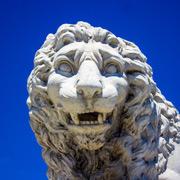 Lion on a Bridge